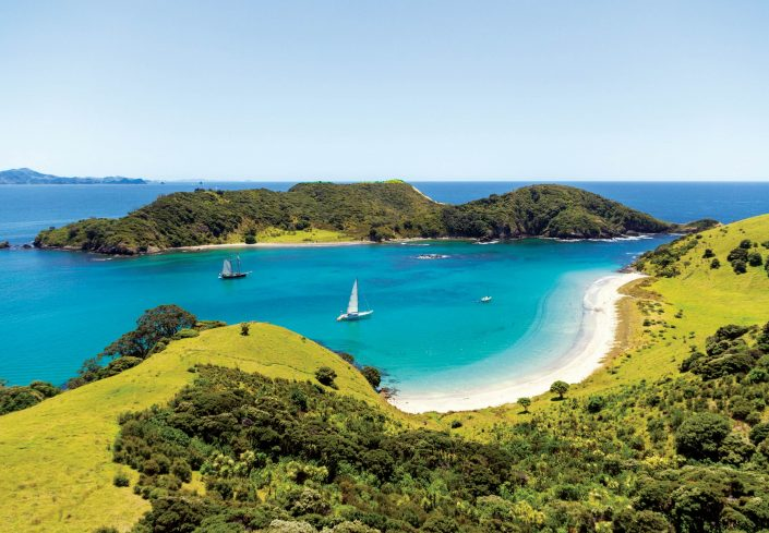 Bucket List Charters - Bay of Islands - Waewaetorea