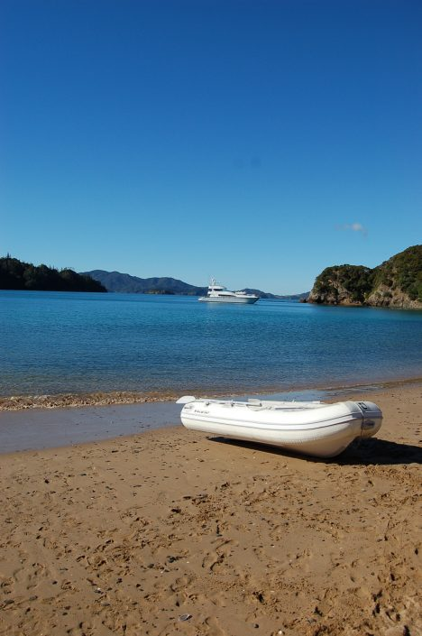 Bucket List Charters - Bay of Islands - activities
